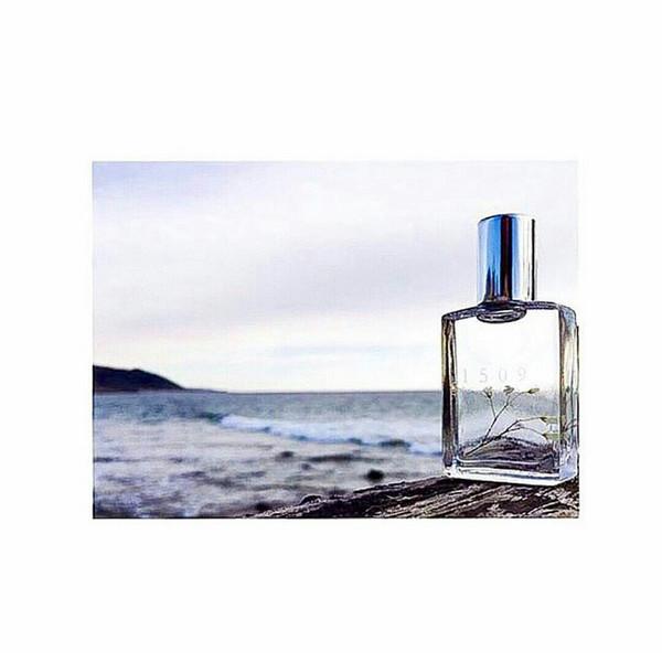 1509  Sophia Pure Fragrance Oil