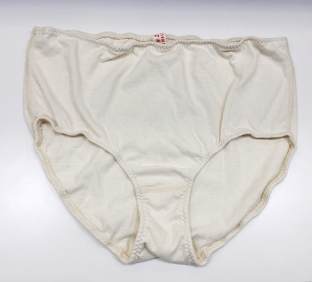 Pansy Co. High Waist Brief