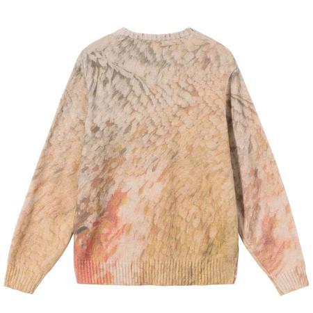Wings Print Sweater 'Multi'