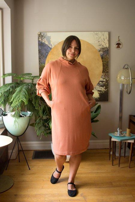 Eve Gravel Pamono Dress - Rose