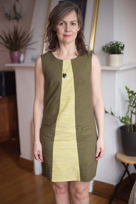 Birds of North America Antshrike Dress (Olive)