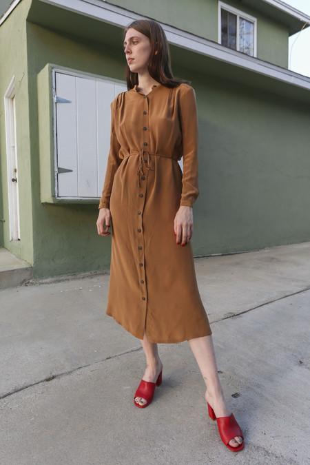 Wolcott : Takemoto Vashon Dress in Penny