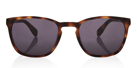 Finlay & Co Bowery Tortoise Sunglasses