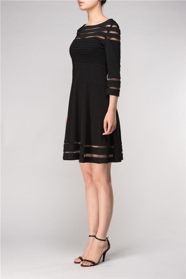 Sheer Panel Black Skater Dress