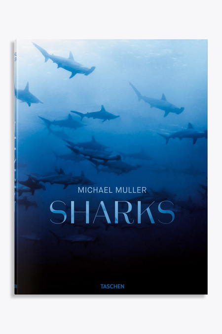 Taschen Sharks: Face-to-face with the ocean's endangered predator