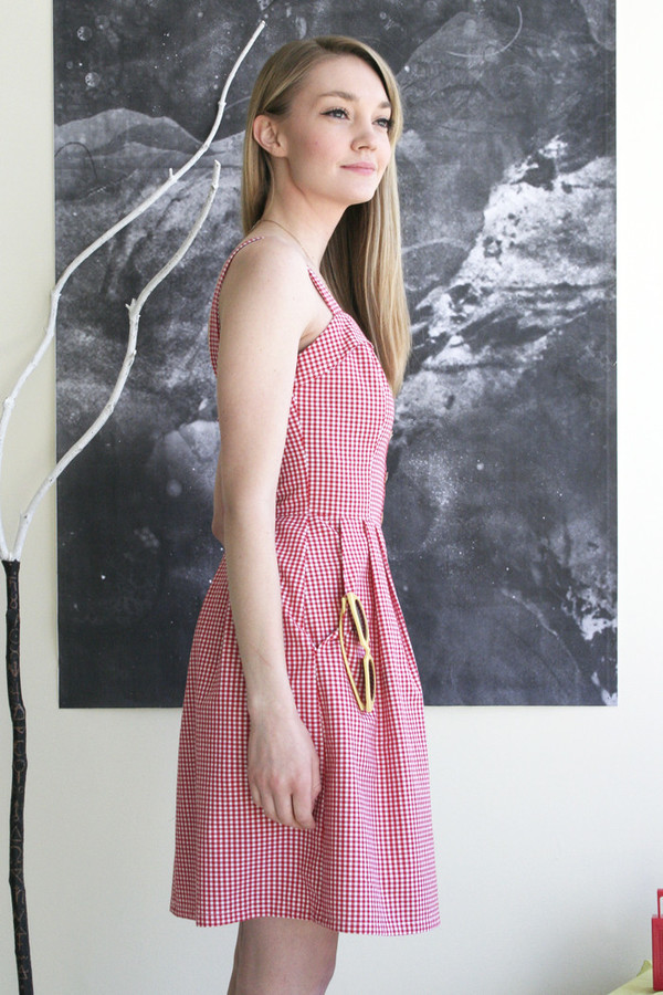 Birds of North America Sylph Dress - Red Gingham