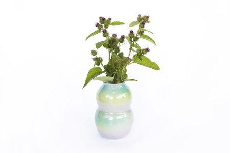Angel Oloshove Ombre Pottery Vase